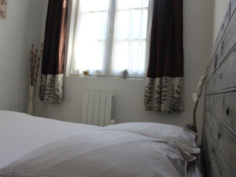 Appartement de charme bord de loire, alquiler vacacional en Saumur