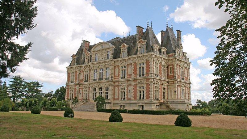 Magnifique château style Louis XIII en parfait état, vacation rental in Segre-en-Anjou Bleu