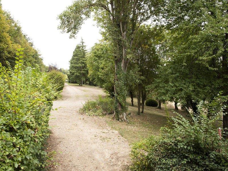 vista do parque da casa