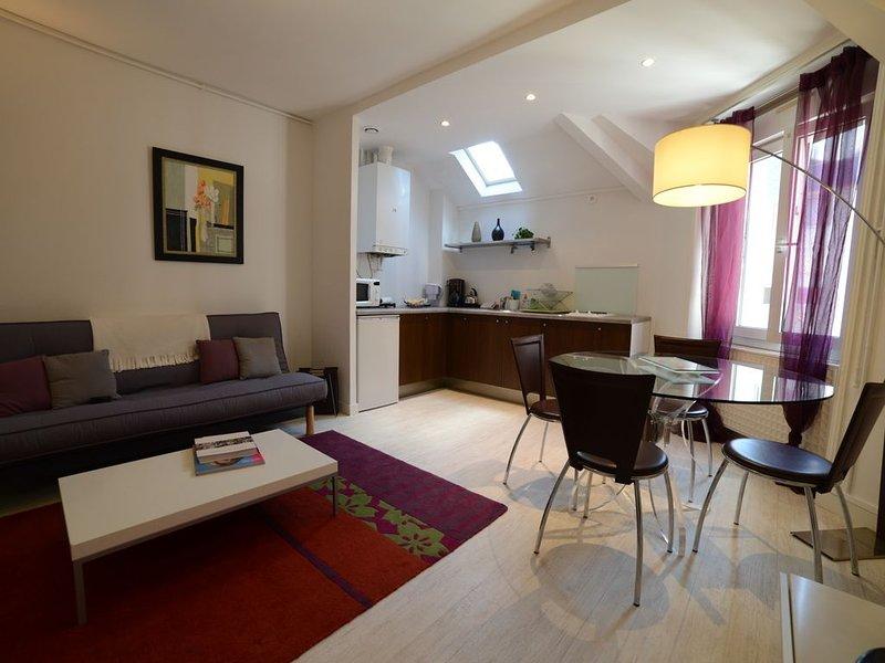 Plein centre- Appartement calme, grand confort. Downtown calm modern apartment., location de vacances à Angers