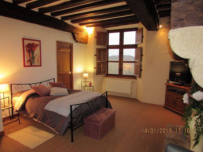 Manoir de la coudre.., holiday rental in La Baconniere