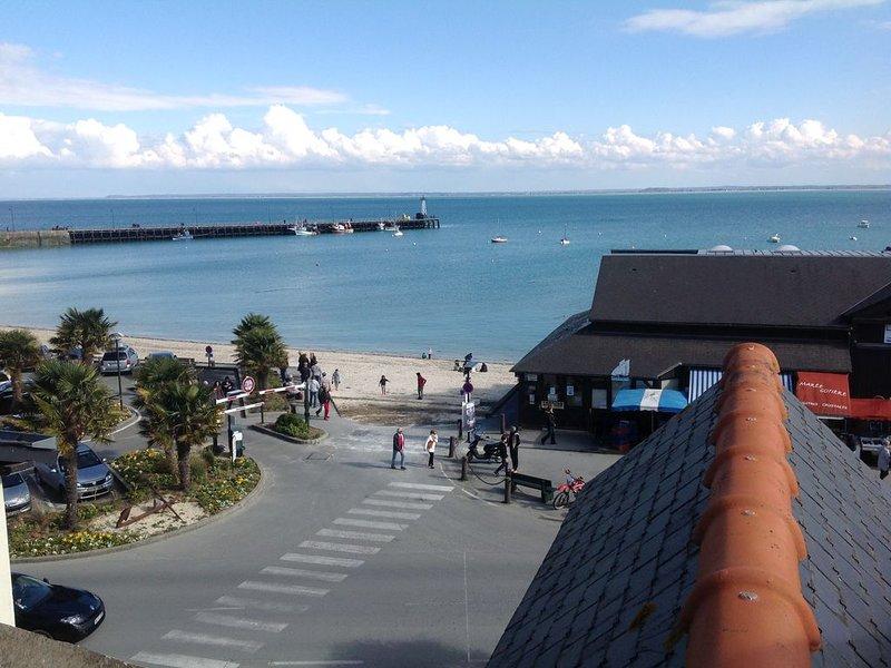 appartement duplex face à la mer avec vue sur le Mont Saint Michel, holiday rental in Saint-Benoit-des-Ondes