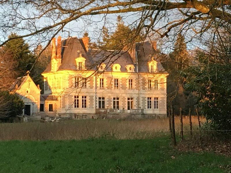 Château avec chapelle XXL, vakantiewoning in Sautron