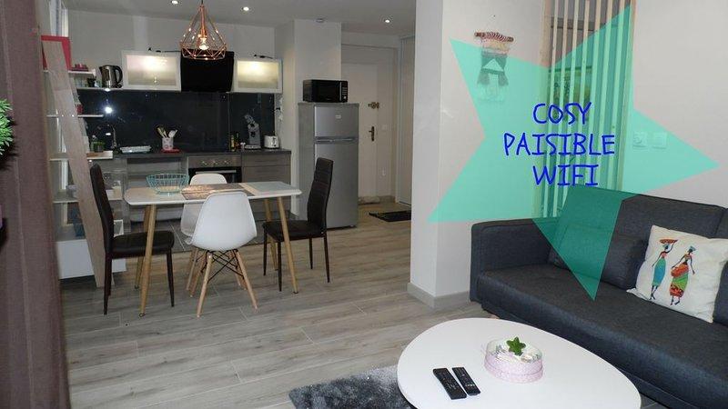 COSY / PAISIBLE / EN COEUR DE VILLE, vacation rental in Le Mans City