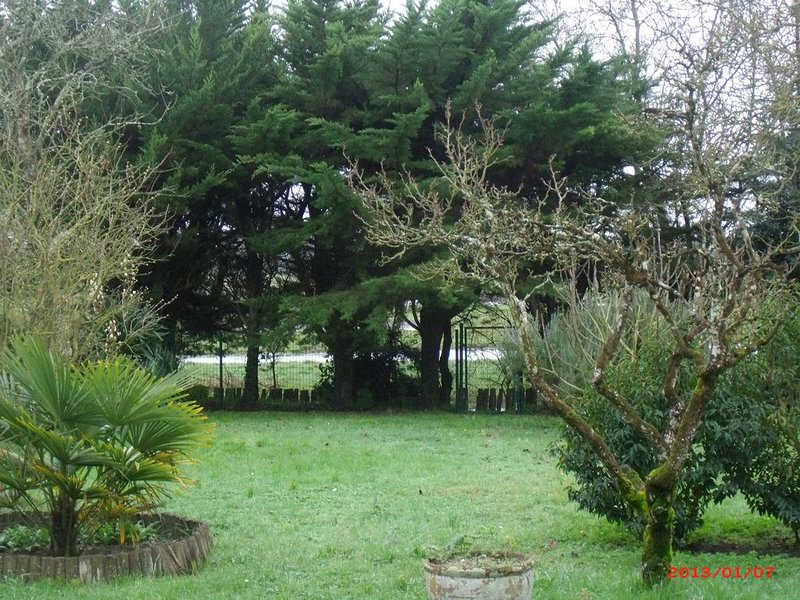 maison ancienne au coeur de sallertaine, jardin clos,commerces a pied, vacation rental in Beauvoir-Sur-Mer