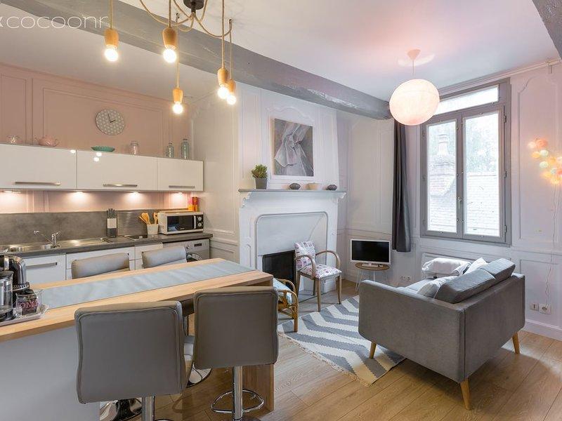 TY MELAINE - perle au coeur de Rennes (1 à 4 pers), holiday rental in Saint-Sulpice-la-Foret