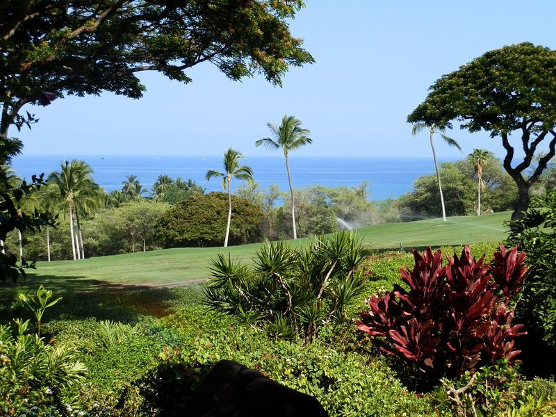 Wonderful Ocean View –Totally Renovated-On Golf Course, holiday rental in Honalo