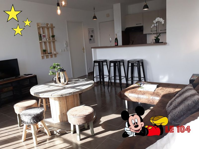 Appartement le 104 - Disneyland Paris - Val d Europe, holiday rental in Villiers-sur-Morin