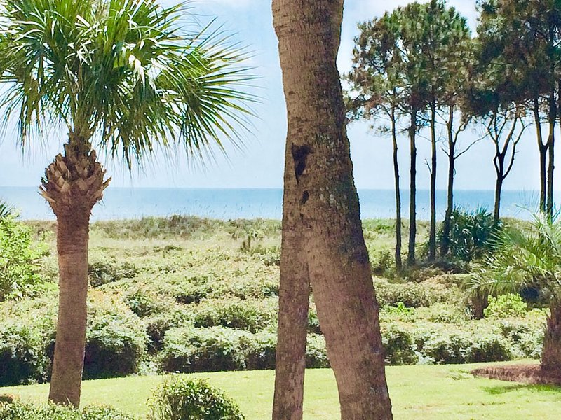 BOOK YOUR VACATION NOW! EMAIL WENDY-GREAT OCEAN VIEW & REVIEWS-KING BED-WI-FI, alquiler de vacaciones en Hilton Head