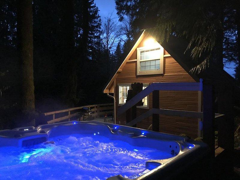 The Cornerstone Cabin - Mount Rainier, holiday rental in Elbe