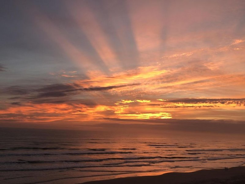 Breath Taking Oceanfront Penthouse Condo 1 Bedroom 1 Bath Sleeps 4 #902409, vacation rental in New Smyrna Beach