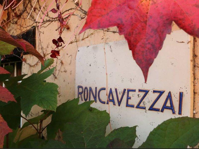 Relax in villa, in the amazing Prosecco vineyards!, alquiler vacacional en Cison Di Valmarino