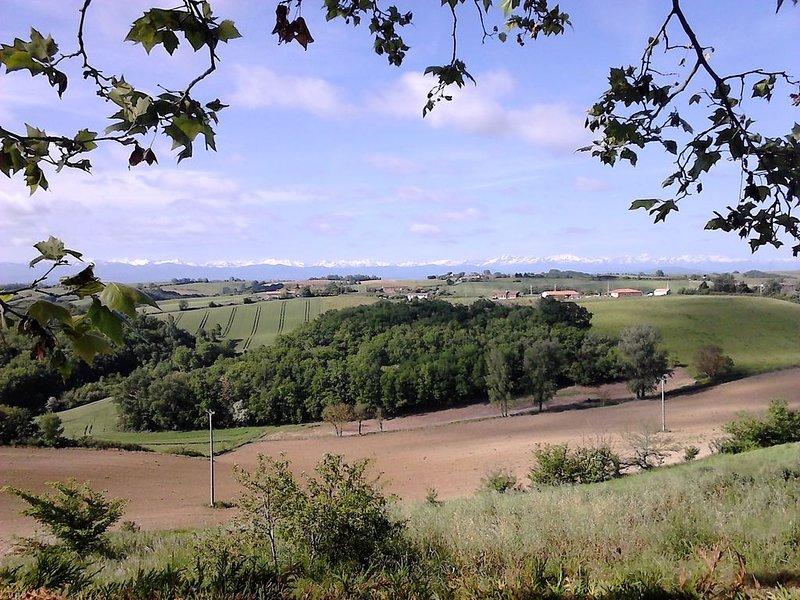 vue des Pyrénées depuis la mairie (100m)