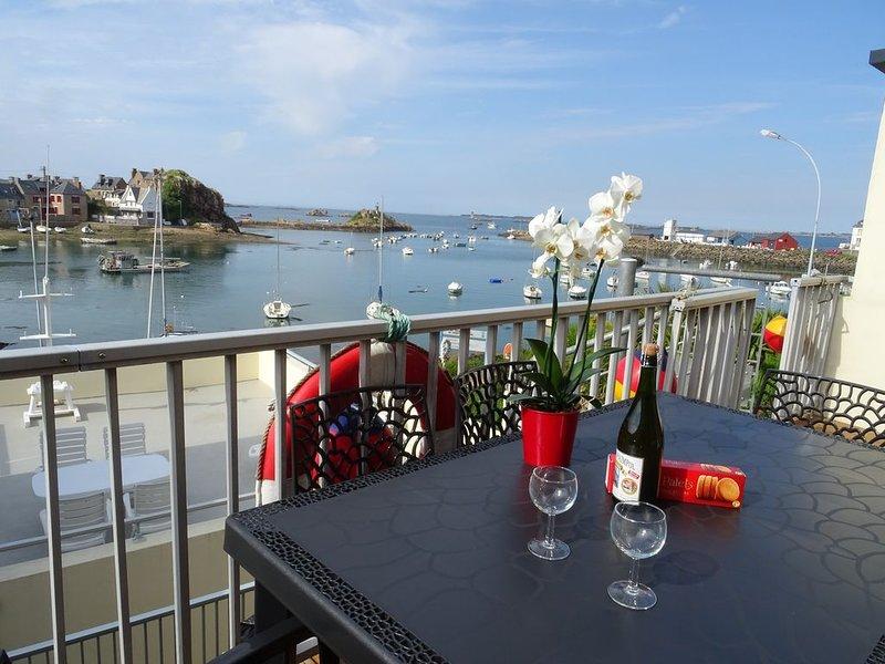 Maison vue sur le port de Loguivy de la Mer ,proche de Bréhat et de Paimpol, holiday rental in Cotes-d'Armor