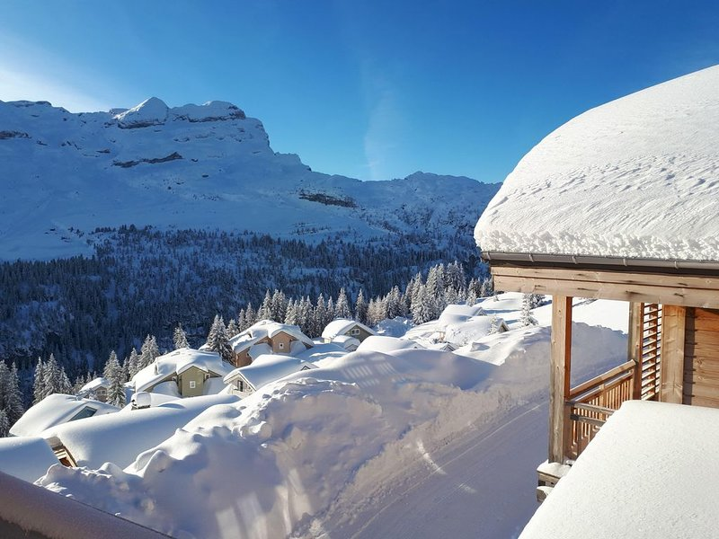 Magnifique appartement au style savoyard dans un cadre grandiose, casa vacanza a Araches-la-Frasse