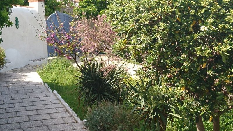 In picturesque area Malmousque 2 minutes from the sea near the center ideal for, vacation rental in Marseille