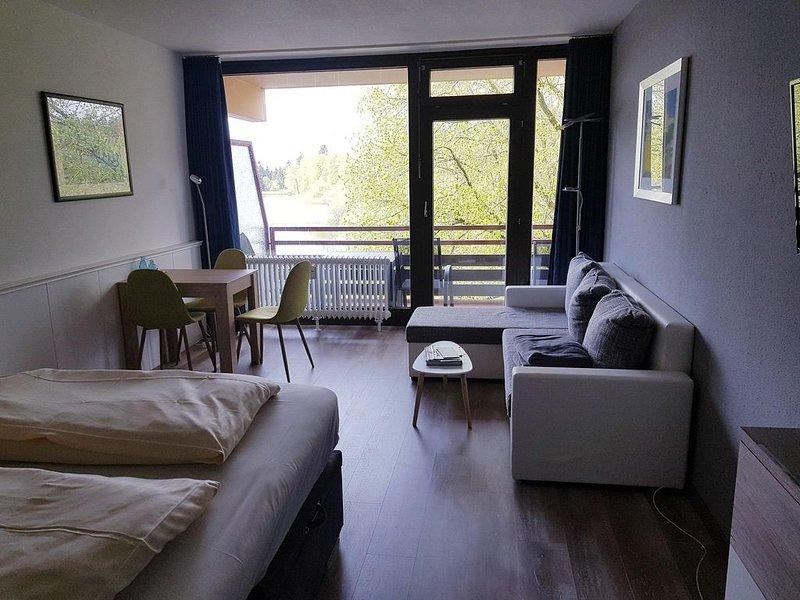 Economy App, Balkon, Pantry-Küche, Pool, Sauna, Dampfbad, WLAN, Paare, Familie, holiday rental in Hahnenklee-Bockswiese