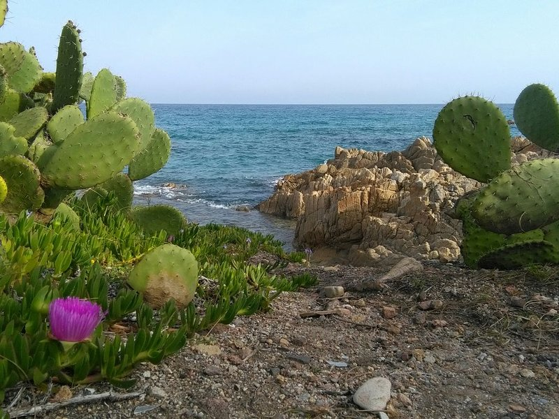 """View of the cliff between Marzellinu and the """"big beach"""""""