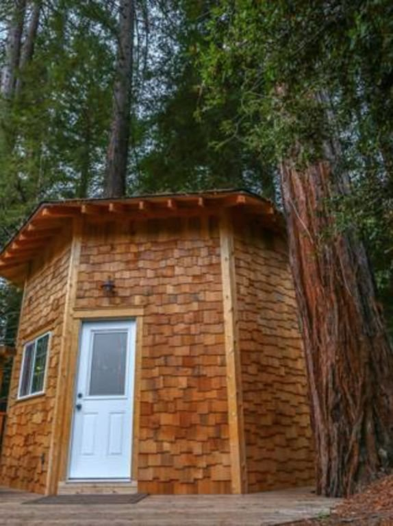 ¡Bienvenido a casa! Nuestra cabina cuenta con techos altos y hermosas vistas de las secoyas.