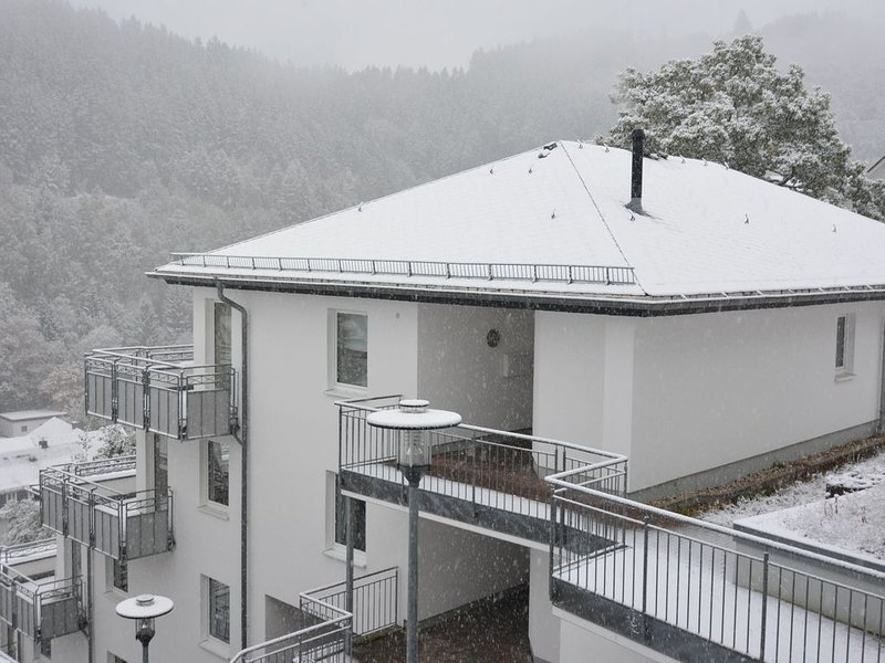 Modern Apartment in Willingen with Central Heating, location de vacances à Schwalefeld