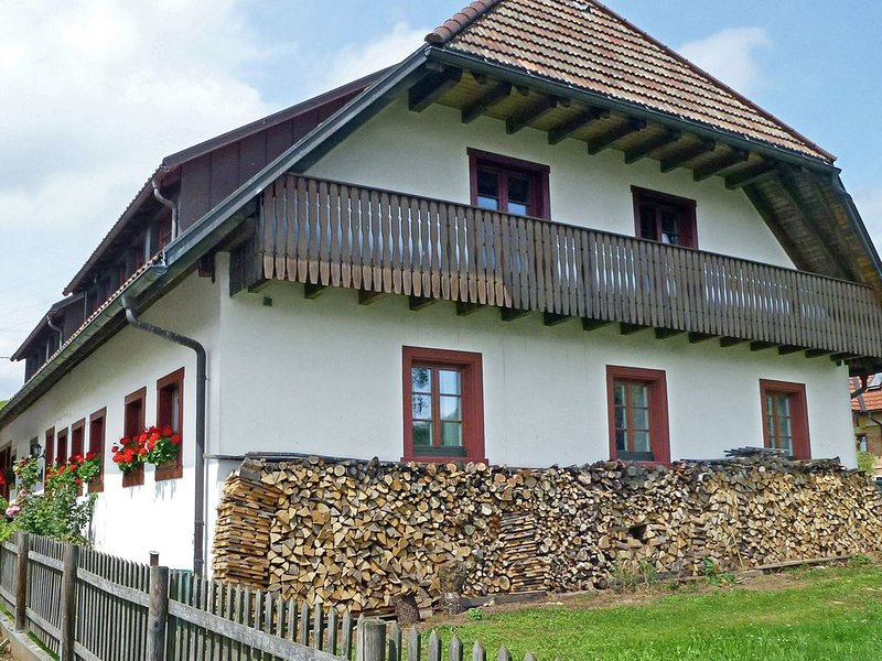 New and comfortable apartment in the south of the Black Forest, holiday rental in Herrischried