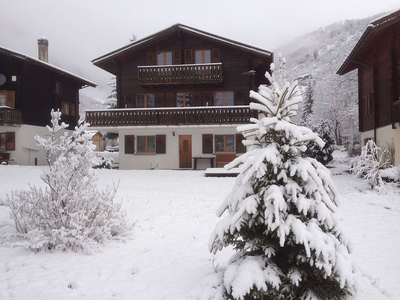 Elegant Apartment in Fieschertal near Forest, holiday rental in Munster