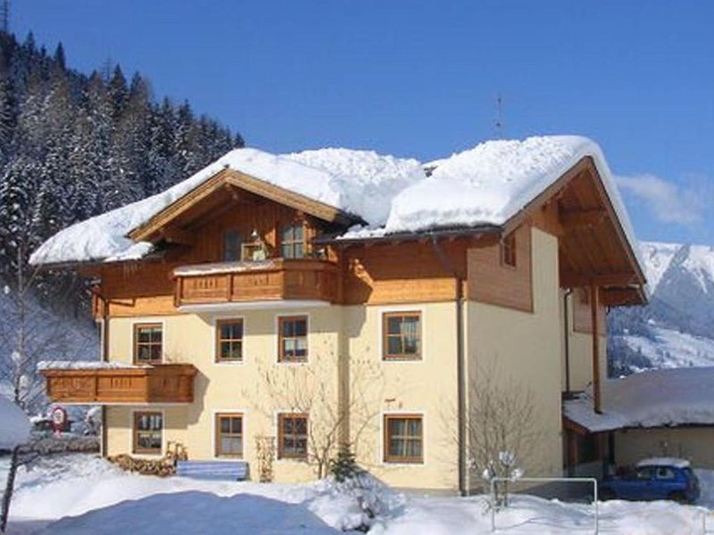 Comfortable Holiday Home in Huttschlag Austria near Ski Area, vakantiewoning in Grossarl