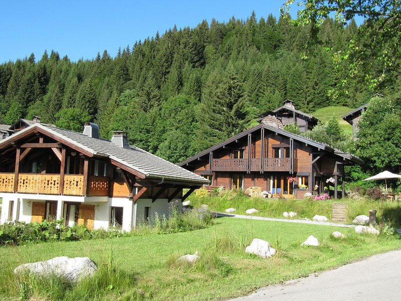 Cozy chalet with sauna in the Alps, 400m from ski slope, location de vacances à Les Gets