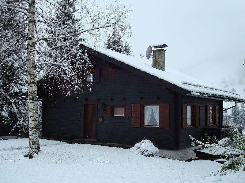 Comfortable Chalet in Ski Area in Großkirchheim, location de vacances à Stall