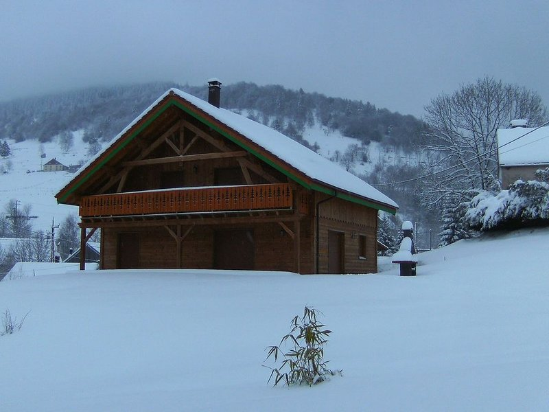 A large and magnificent wooden chalet with a sauna, holiday rental in Husseren-Wesserling