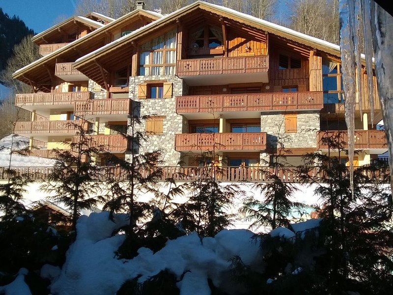 Beautiful south facing chalet, holiday rental in Champagny-en-Vanoise