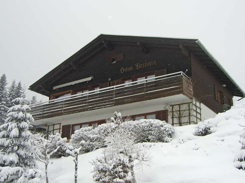 Cosy Holiday Home in Egg near Ski Area, holiday rental in Schwarzenberg