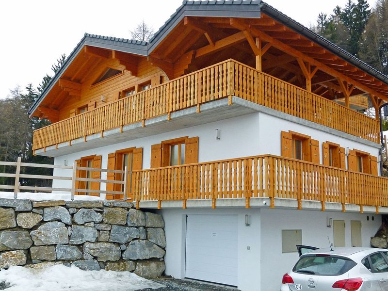 Comfortable chalet at 1500m and has a sauna., holiday rental in Riddes