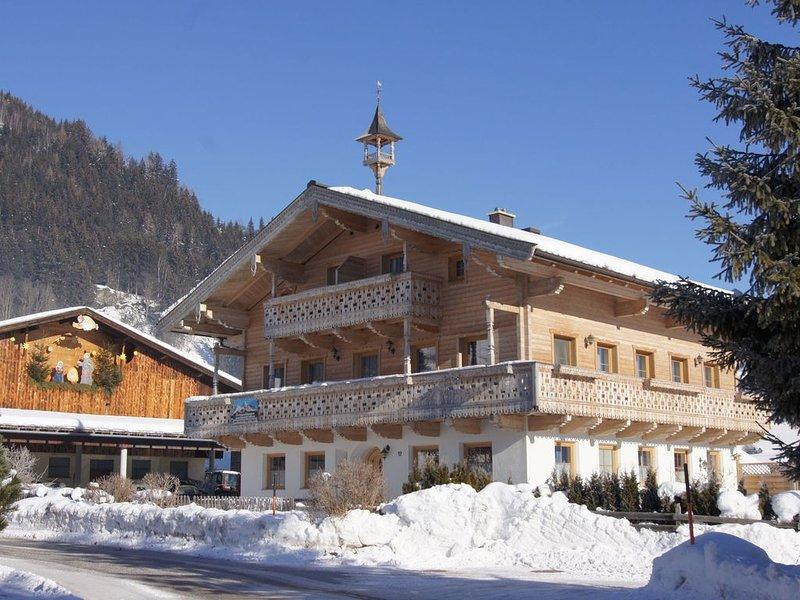 Brand new appartment (2008) in a picturesque farmer's village, location de vacances à Hollersbach im Pinzgau