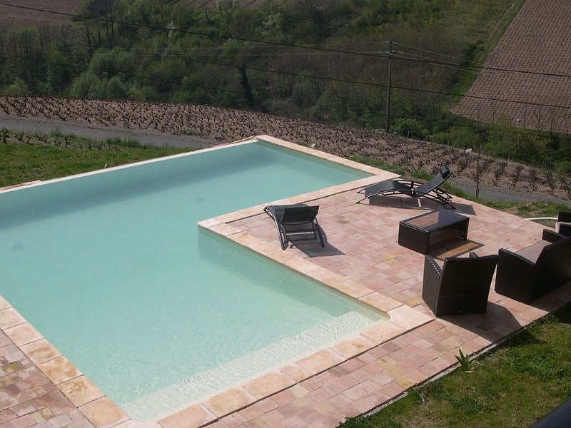 Villa with private swimming pool, heart of Beaujolais and with view on vineyard, vacation rental in Saint-Igny-de-Vers