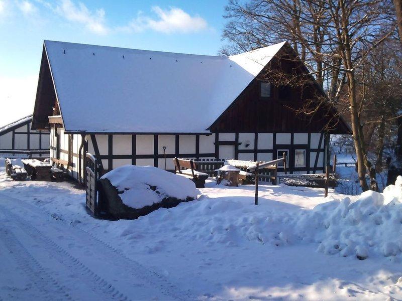Lovely Holiday Home in Vellinghausen near Ski Area, alquiler vacacional en Kirchrarbach