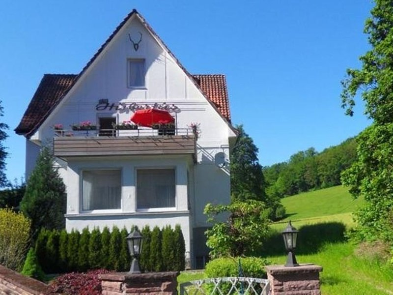 Nice home by Bad Pyrmont in the Weser Uplands - garden, grill, great location, alquiler vacacional en Hehlen
