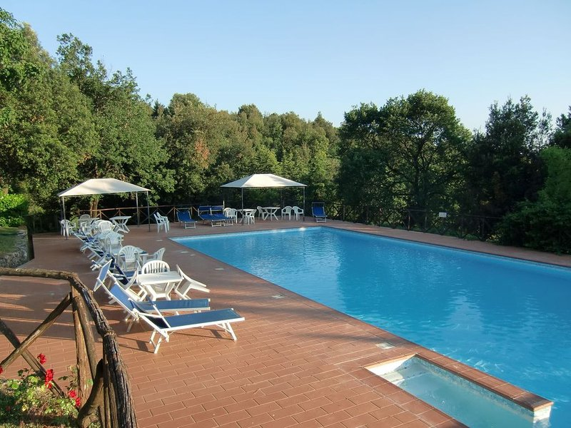Vintage Castle in Monteriggioni Tuscany near Forest, holiday rental in Strove