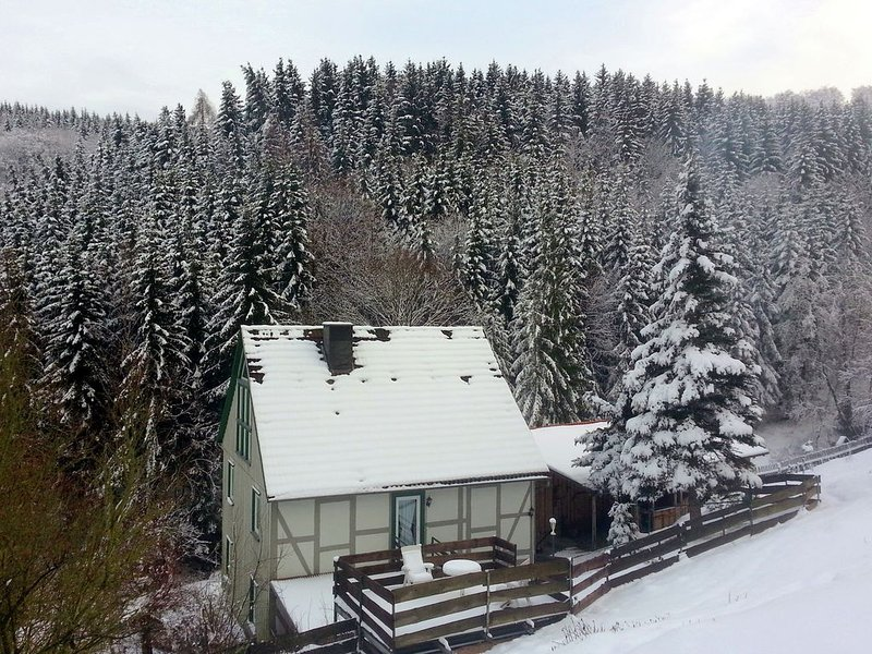 Large apartment in Rübeland in the Harz with cosy wood stove, holiday rental in Stiege