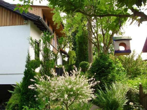 Vacation home Vöhl for 2 persons with 1 bedroom - Holiday apartment, holiday rental in Vohl