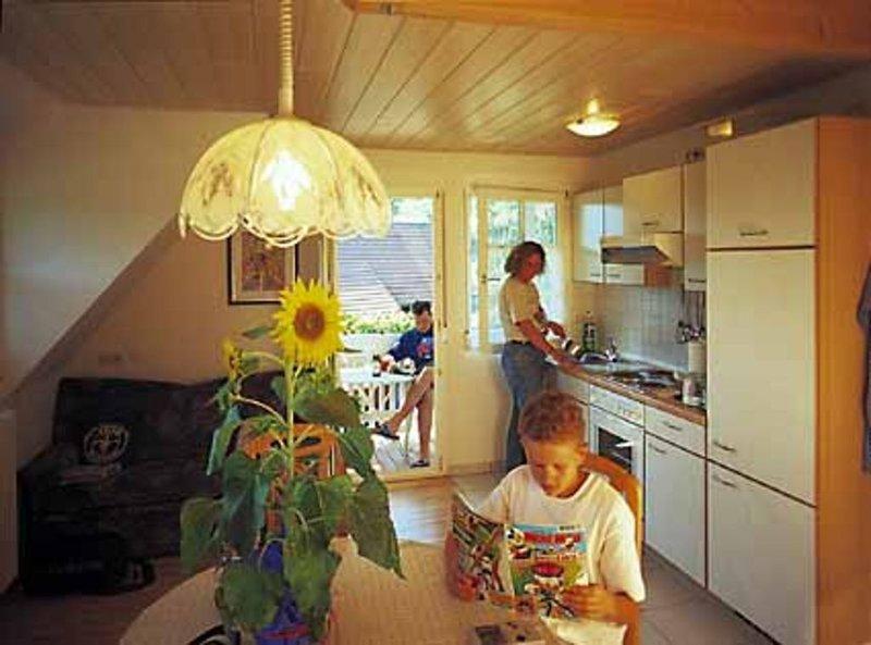 Ferienwohnung Hof, 60 qm, 2 Schlafräume, max. 4 Personen, aluguéis de temporada em Bad Rippoldsau