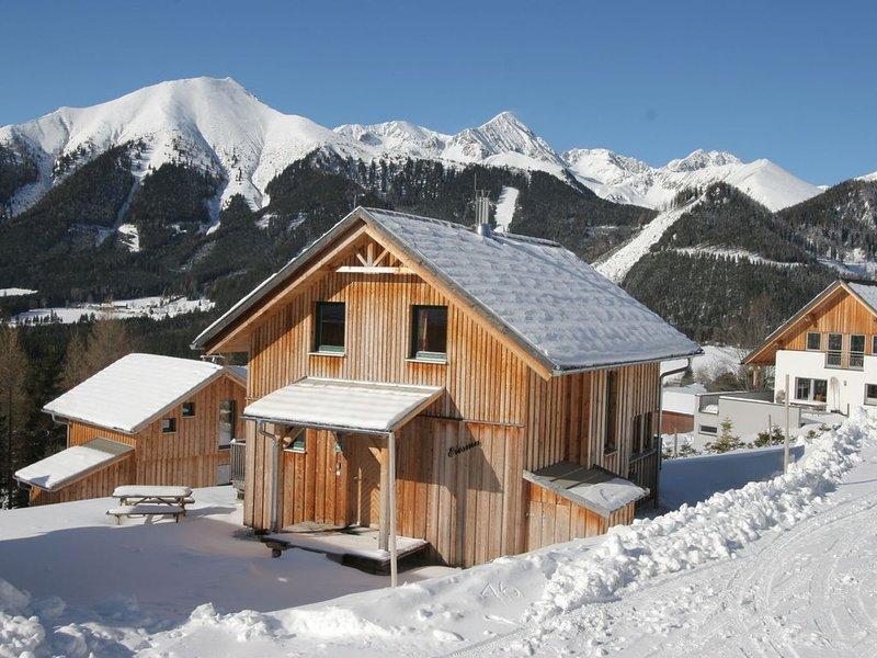 Cosy Chalet in Hohentauern near Skiing Area, holiday rental in Spital am Pyhrn