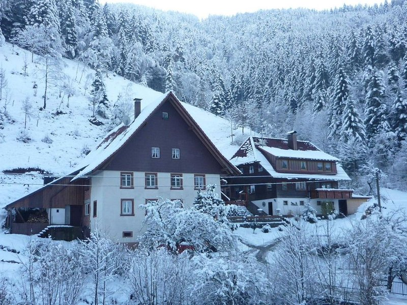 Great holiday for groups or multiple families on a beautiful Black Forest farm., holiday rental in Sankt Margen