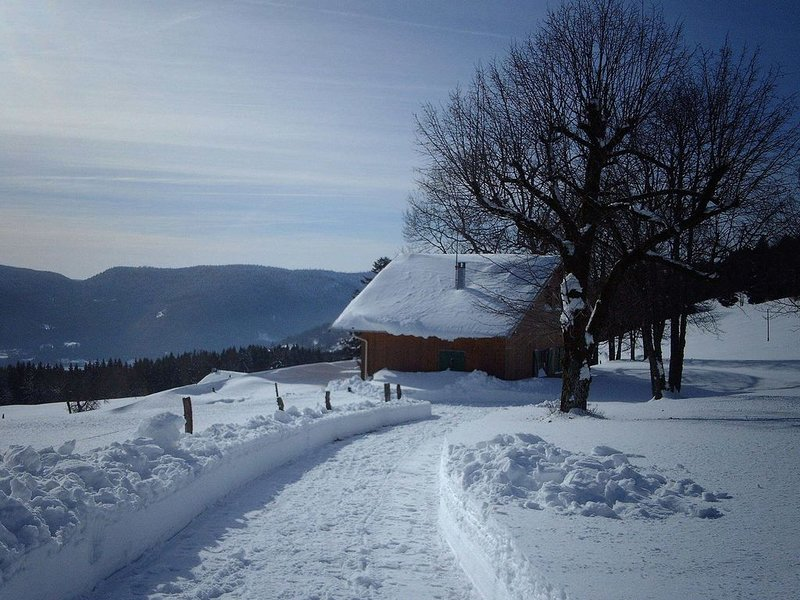 chalet,5km from a lake,in Le Ballon des Vosges, vacation rental in Saulxures-sur-Moselotte