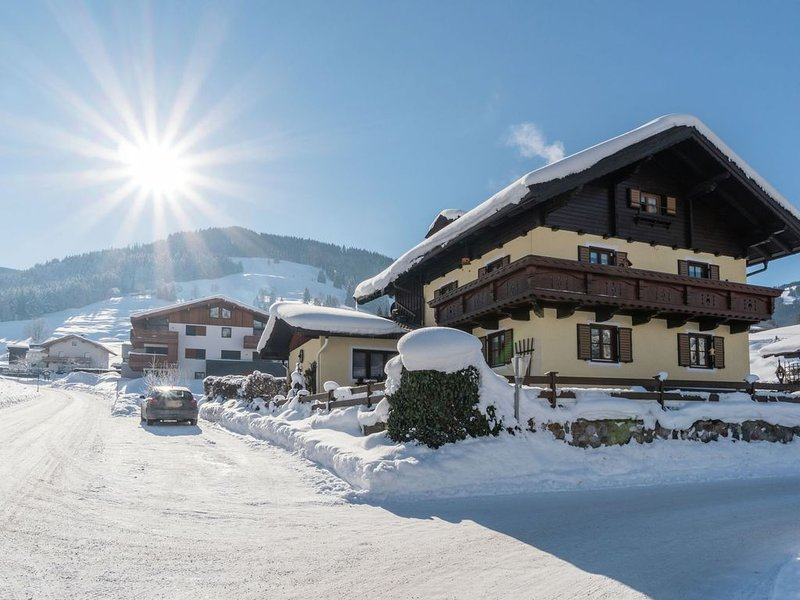 Spacious apartments with private entrance near the ski piste and the centre, holiday rental in Leogang