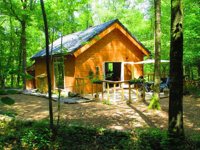 Cozy Chalet in Oignies-en-Thiérache with Sauna, holiday rental in Montherme