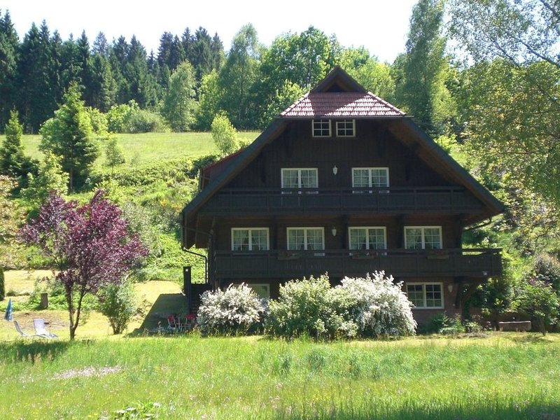 Holiday apartment in a traditional Black Forest house in the idyllic Black Fore, aluguéis de temporada em Bad Rippoldsau