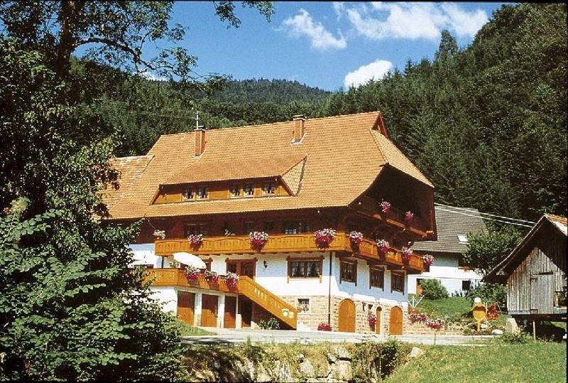 Ferienwohnung 4 Bachblick, 25qm, 1 Wohn-/Schlafraum, max. 2 Personen, aluguéis de temporada em Oberharmersbach