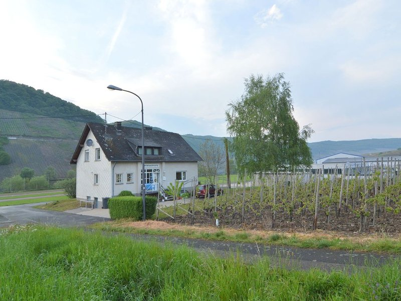 At the Mosel shore located apartment, on the route of the famous Moselsteig, location de vacances à Trittenheim