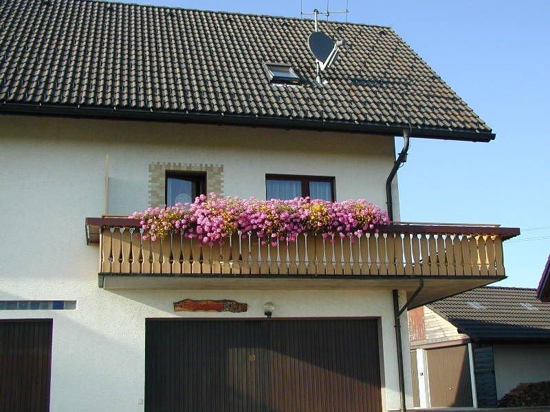 Ferienwohnung Typ B 55qm, 1 Schlafzimmer, max. 2 Erwachsene + 1 Kind, vacation rental in Endingen